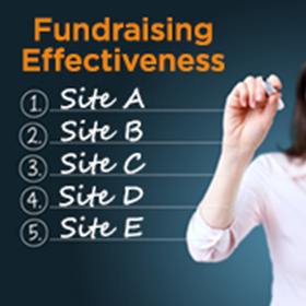 Helping Nonprofit Networks Strengthen Their Fundraising Effectiveness